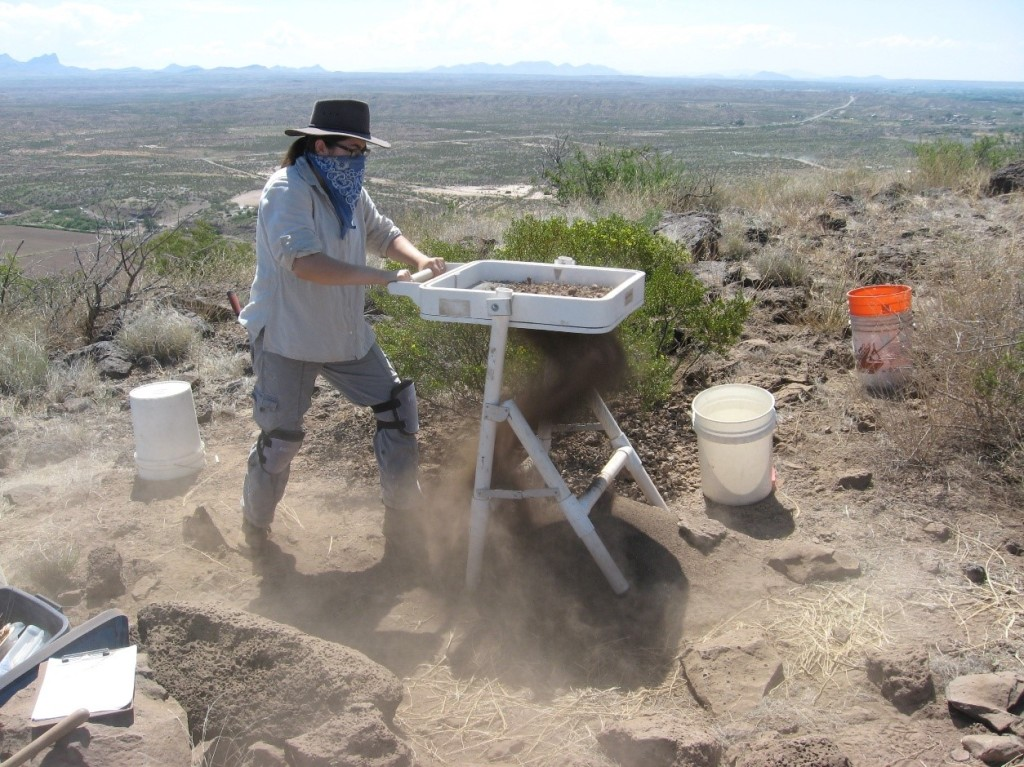 """Here I am """"creating a blast of dirt"""" while screening the unit's dirt."""