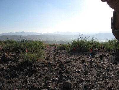 The flags seen in the photo were used to mark the location of pottery sherds. Not pictured, the several rattlesnakes that inhabit the ruins.